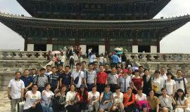 方圆集团组织部分职工分两批赴韩国观光游览